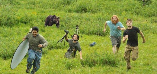 bearphoto