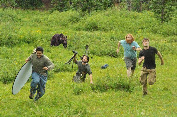 Инструкция по фотографированию медведей