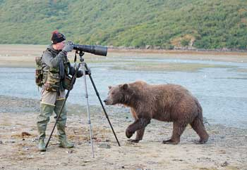 bearphoto2