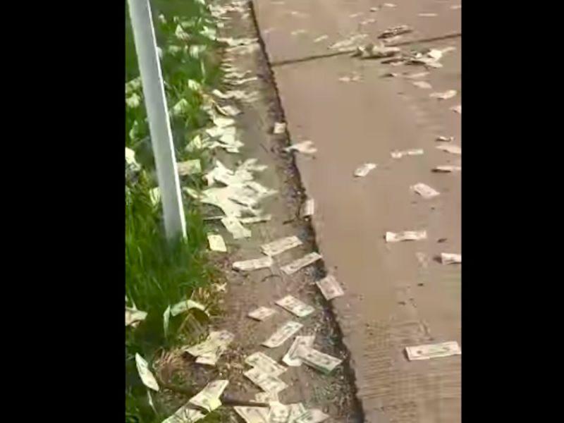 Ковер из долларов на дороге